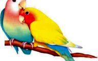3D Love Birds  10 Background