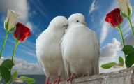 3D Love Birds 18 Free Wallpaper