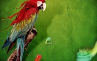 3D Love Birds 24 Desktop Background
