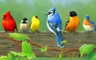 3D Love Birds  3 Widescreen Wallpaper