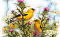 3D Love Birds 8 Widescreen Wallpaper