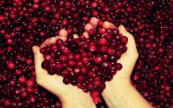 Free Heart Wallpaper Downloads 12 Cool Wallpaper