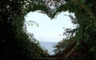 Love Hearts In Nature 30 Widescreen Wallpaper