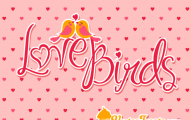 Valentine Love Birds Quotes  20 Background