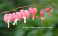 Sad Love Wallpapers With Quotes  14 Desktop Background