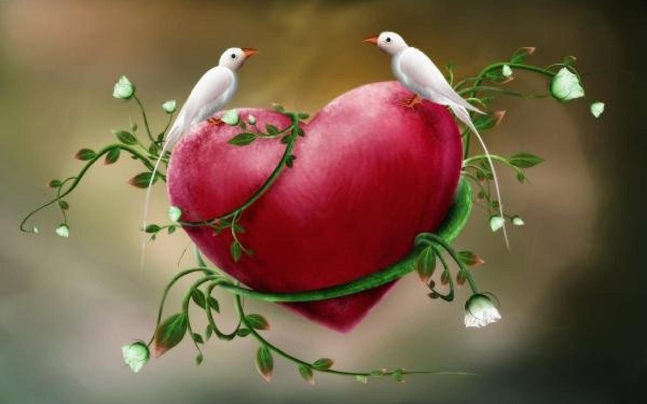 3d love birds 25 high resolution wallpaper - hdlovewall