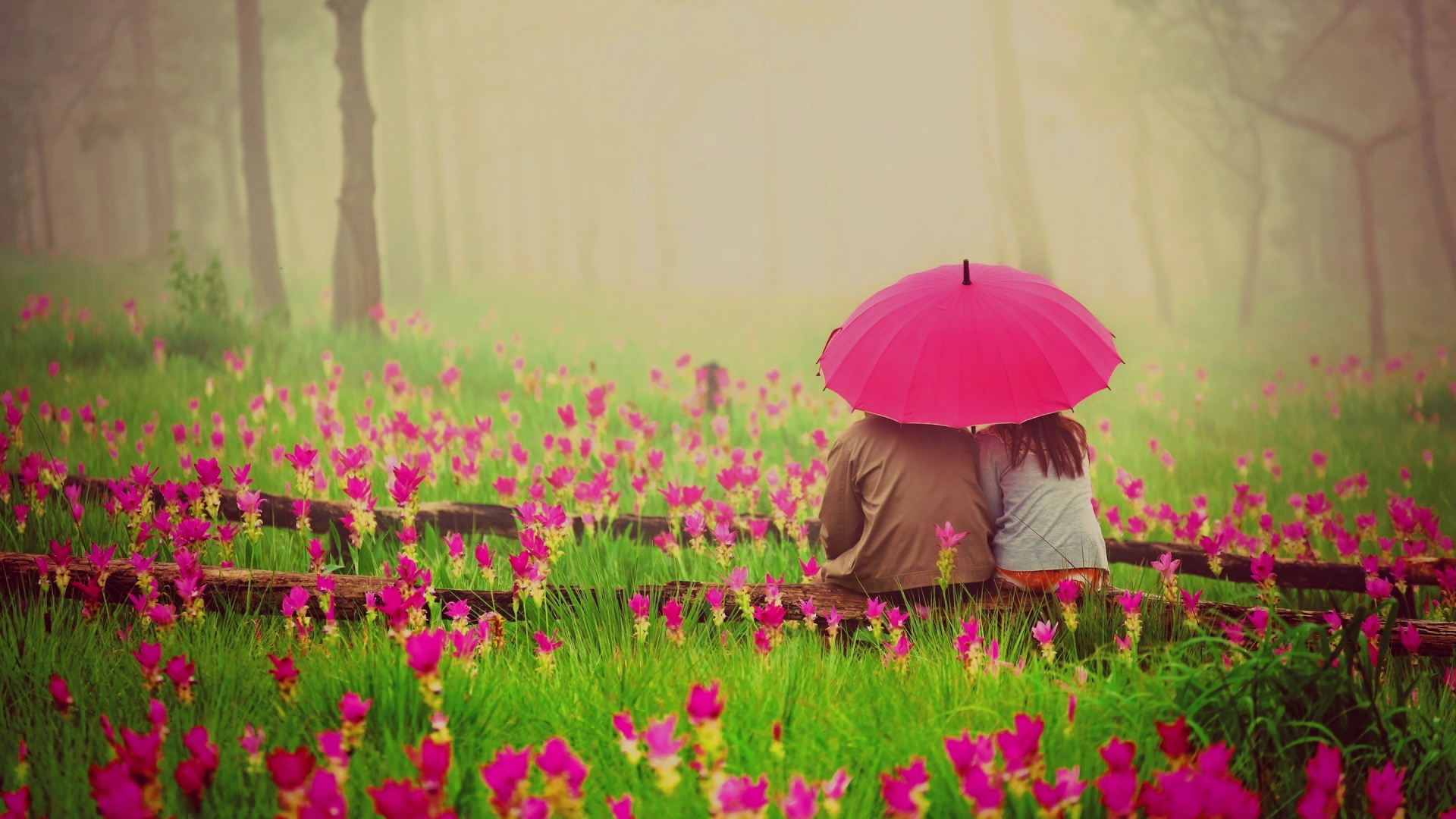 Love Wallpapers With Flowers : Romantic Love Flowers Pictures 20 cool Hd Wallpaper - Hdlovewall.com