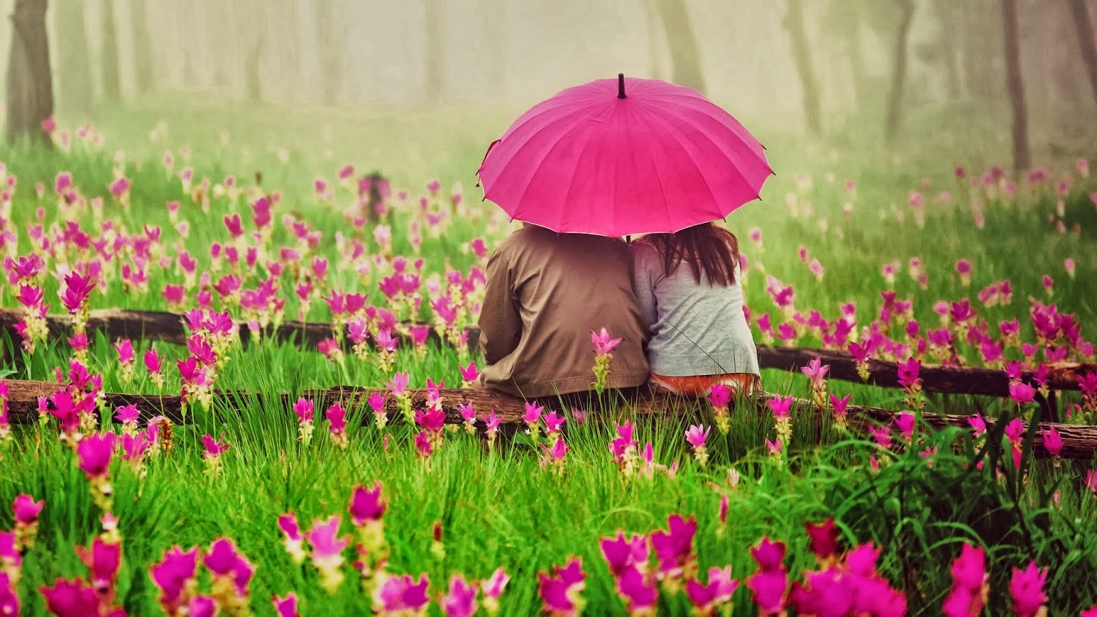 Romantic Love Hd Wallpapers 13 Free Wallpaper - Hdlovewall.com